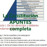 La Constitución explicada